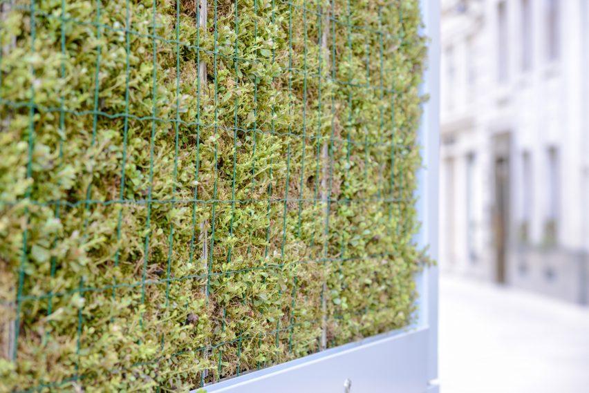 Nguyên lý vận hành của rèm lọc không khí cũng như lá cây quang hợp.