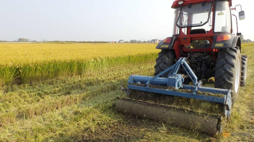 Máy kéo tự động thử nghiệm trên cánh đồng ở thị xã Hưng Hóa, tỉnh Giang Tô, Trung Quốc. (Nguồn: Reuters).