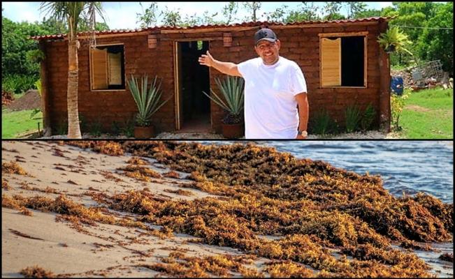 Ông Omar Sanchez và căn nhà làm từ vật liệu tảo mơ.