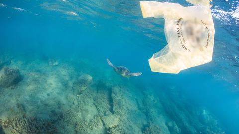 Những dự án như ở thành phố Bodrum sẽ góp phần giúp giảm lượng rác thải nhựa.