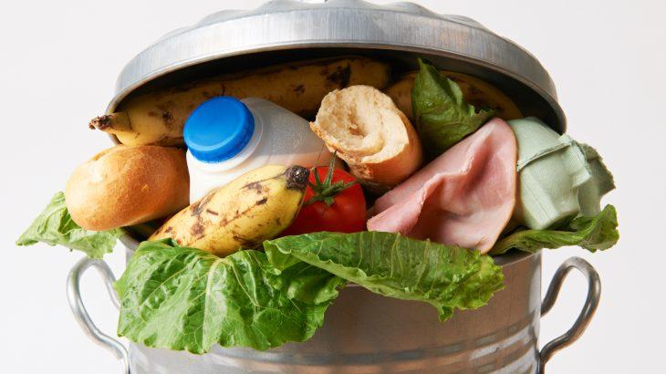 FAO cảnh báo, mỗi năm, gần 1,3 tỷ tấn thực phẩm thừa bị vứt bỏ tại các nước phát triển.