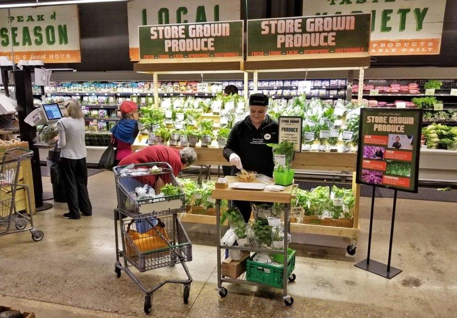 FAO cũng chỉ trích nhiều siêu thị phương Tây sẵn sàng vứt bỏ hàng hóa là thực phẩm vẫn an toàn cho người tiêu dùng, chỉ bởi bề ngoài các sản phẩm không còn hoàn hảo nữa.