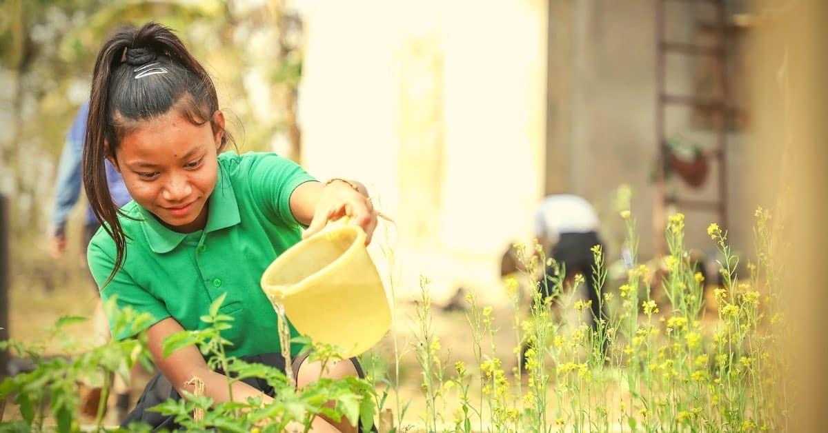 Học sinh được học cách trồng cây tại trường.