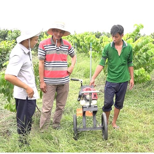 Nhờ máy cắt cỏ do ông Đậm sáng chế người lao động tại đây không còn vất vả vì sử dụng công cụ truyền thống.