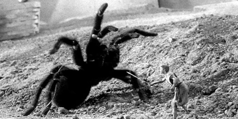eight-legs-spiders-tarantula-arachnophobia-shatner.jpg