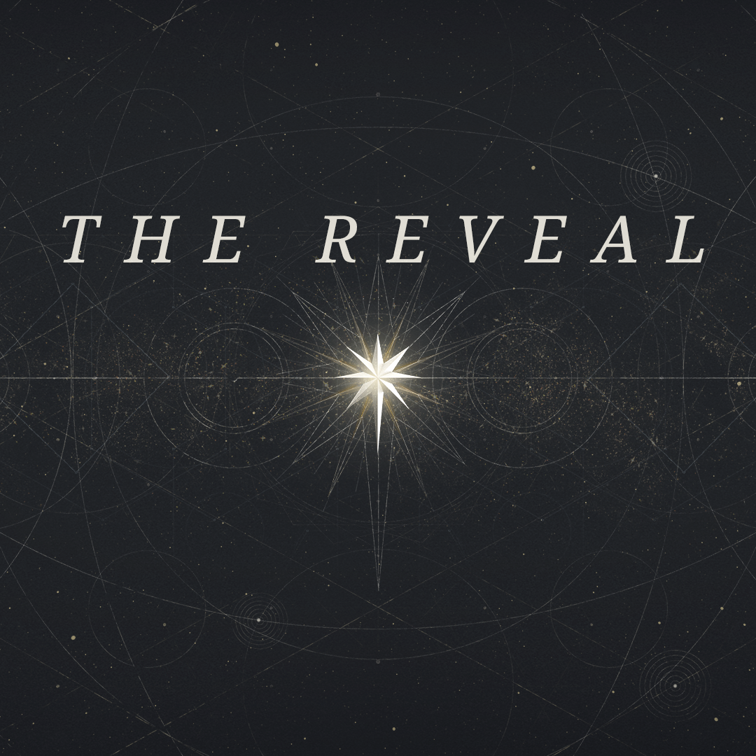 The Reveal Blog.png