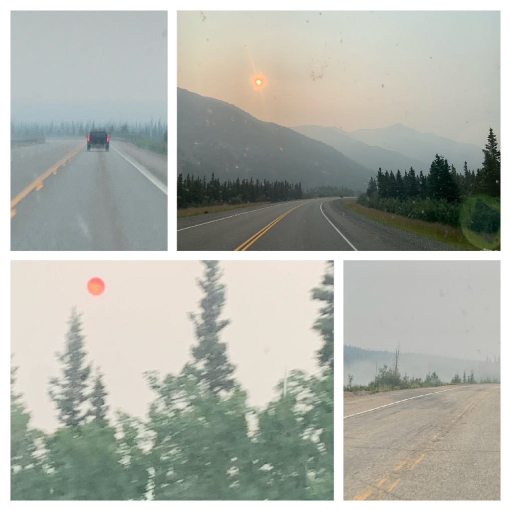 July was a month of fire in Alaska. The were fires all over the state. We did have some fire in the Denali Borough, but none threatened Husky Homestead directly. The smoke was everywhere, though.
