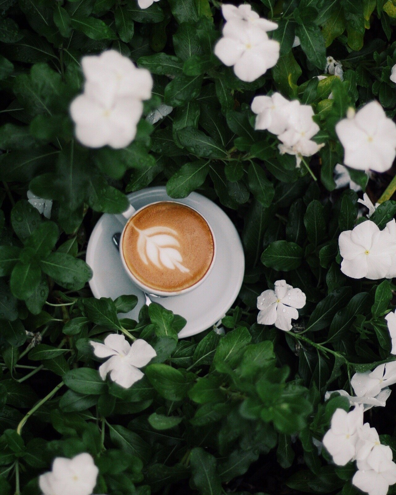 """'Everything gets better with coffee."""""""