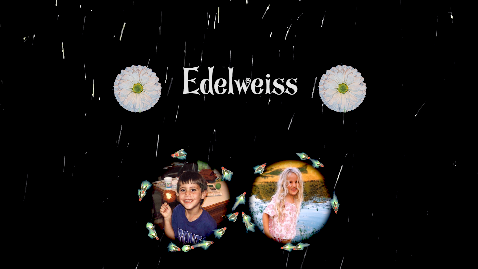Edelweiss Music Video (Spanish Version)!