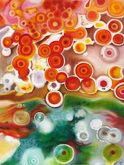 Frances Babb-Tejaswi_Orange Agate.jpg