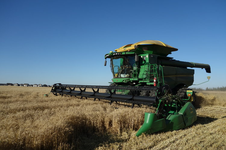 HARVESTING A 40 ACRE GROW HOPE FIELD JUST SOUTH OF FORT SASKATCHEWAN. THE BOYS FROM GALLOWAY SEEDS ARE HARD AT WORK HERE!