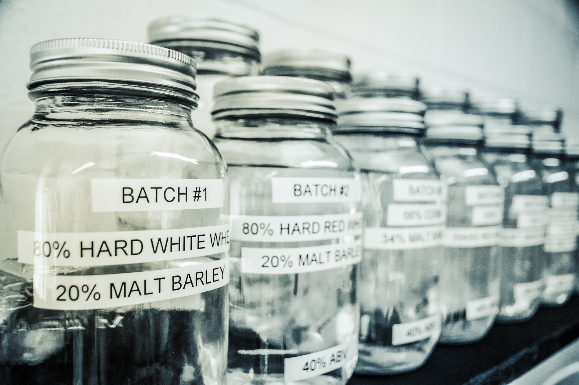 Park Distillery Vodka Test| Photo Credit: Anna Robi