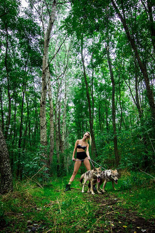 Vagány portfólió fotó erdőben farkasokkal