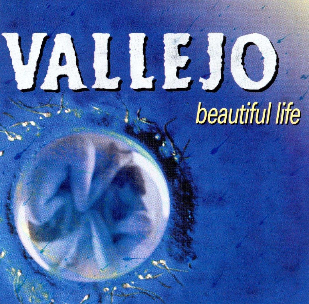 Vallejo - Beautiful Life.jpeg