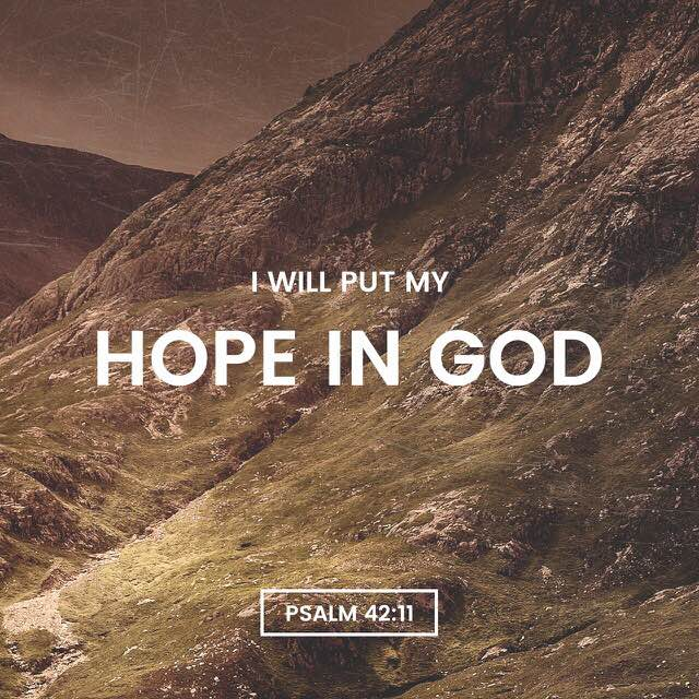 Psalm 42:11 - written by David