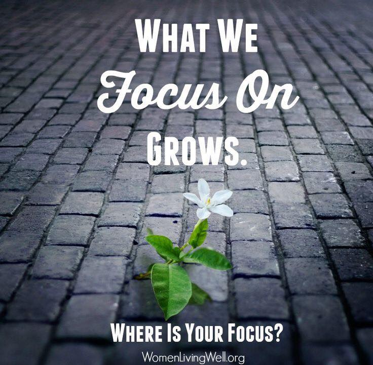 Where is your Focus? - What we focus on grows.