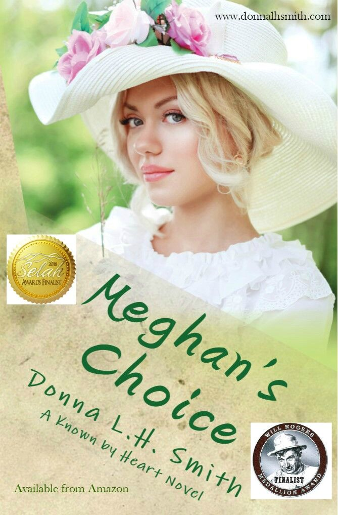 Meghan's Choice by Donna Smith