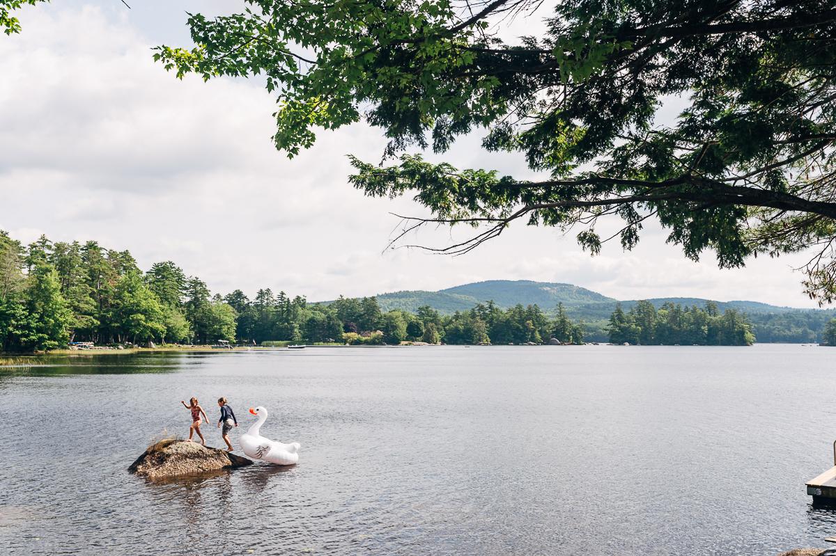 lake swan.jpg
