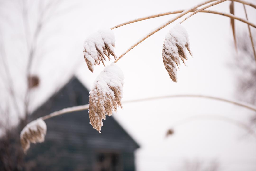 166 winter-13.jpg
