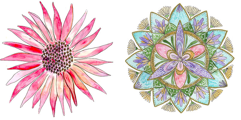 Louise Gale Botanical Mandalas