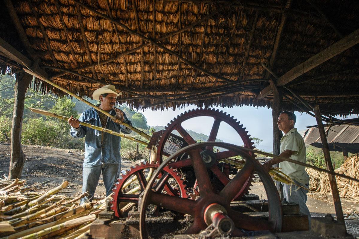 Trapiche Oaxaca Rum Paranubes.jpg