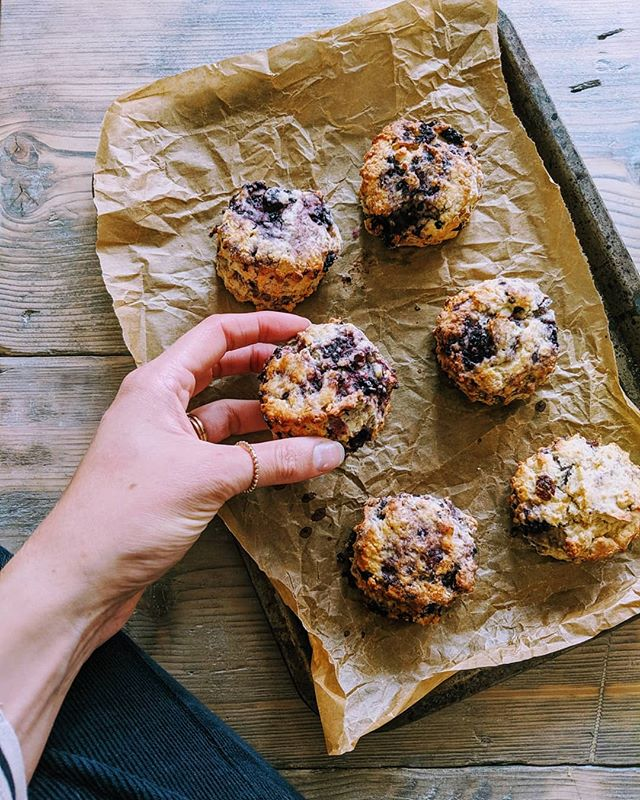 Before the rain, we snuck out to pick blackberries (me) and go swimming in the stream (him). When the rain came we headed home and we made @the_mothercooker's fantastic blackberry scones (me) and chewed a table leg (him). I think we'll do the same again tomorrow.  These blackberry scones are one of my recommended recipes in this month's Lottie Letter. Each month I write a letter from my kitchen table, a longer read about something that's been on my mind. I also include my recommended reads, watches and recipes. Sign up if you'd like, you can do so via the link in my bio, and my letter will land in your inbox each month. September's letter is going out today.