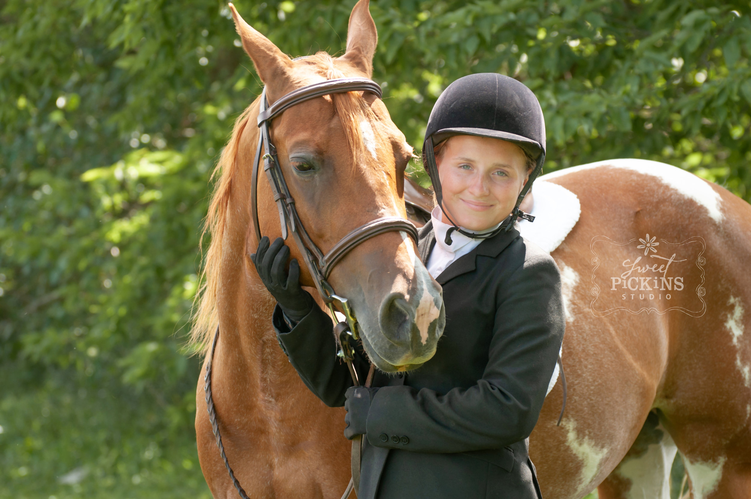 Equestrian Horse Portrait Photography Session