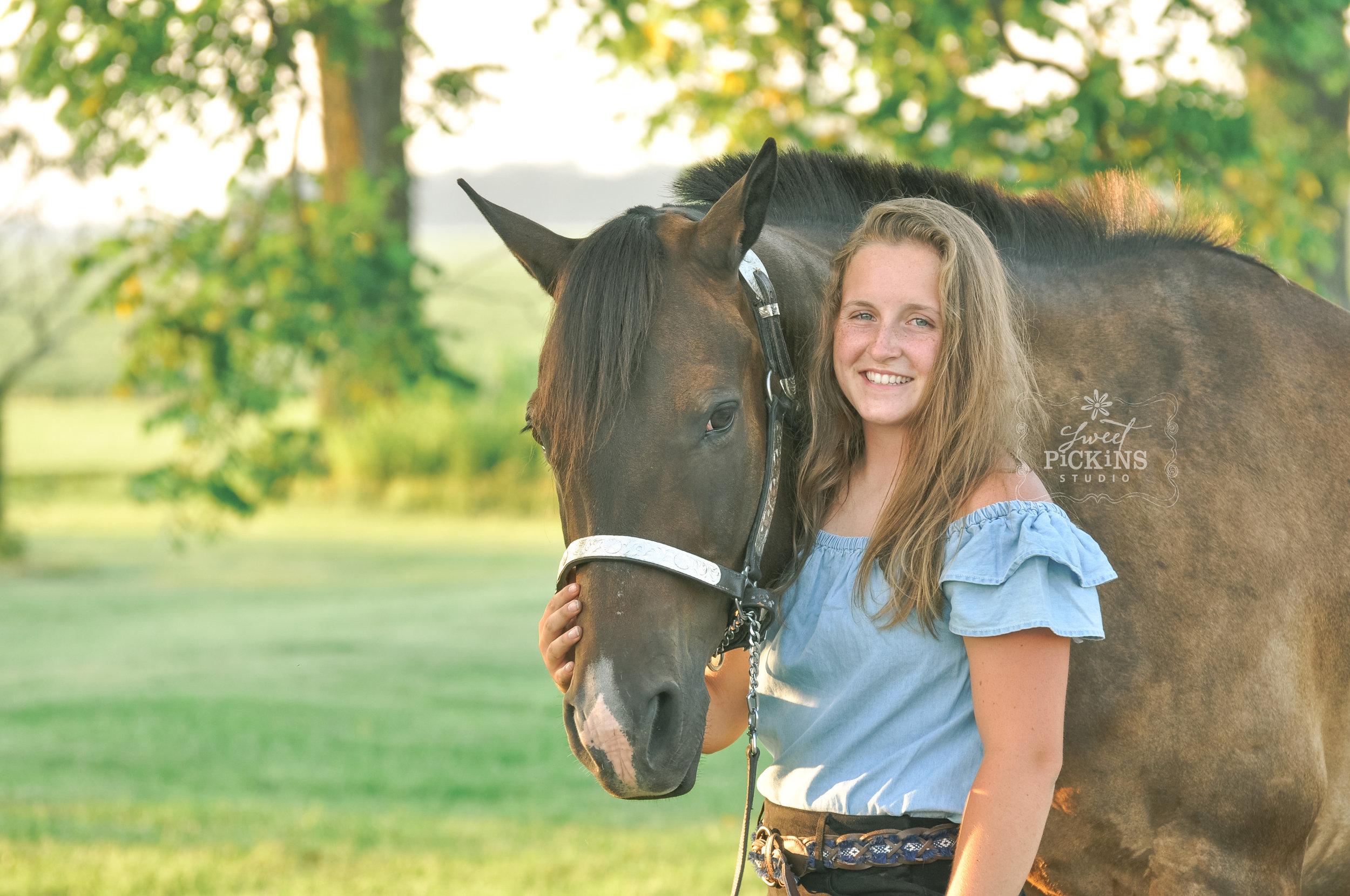 Peru, Indiana Equine Portrait Session