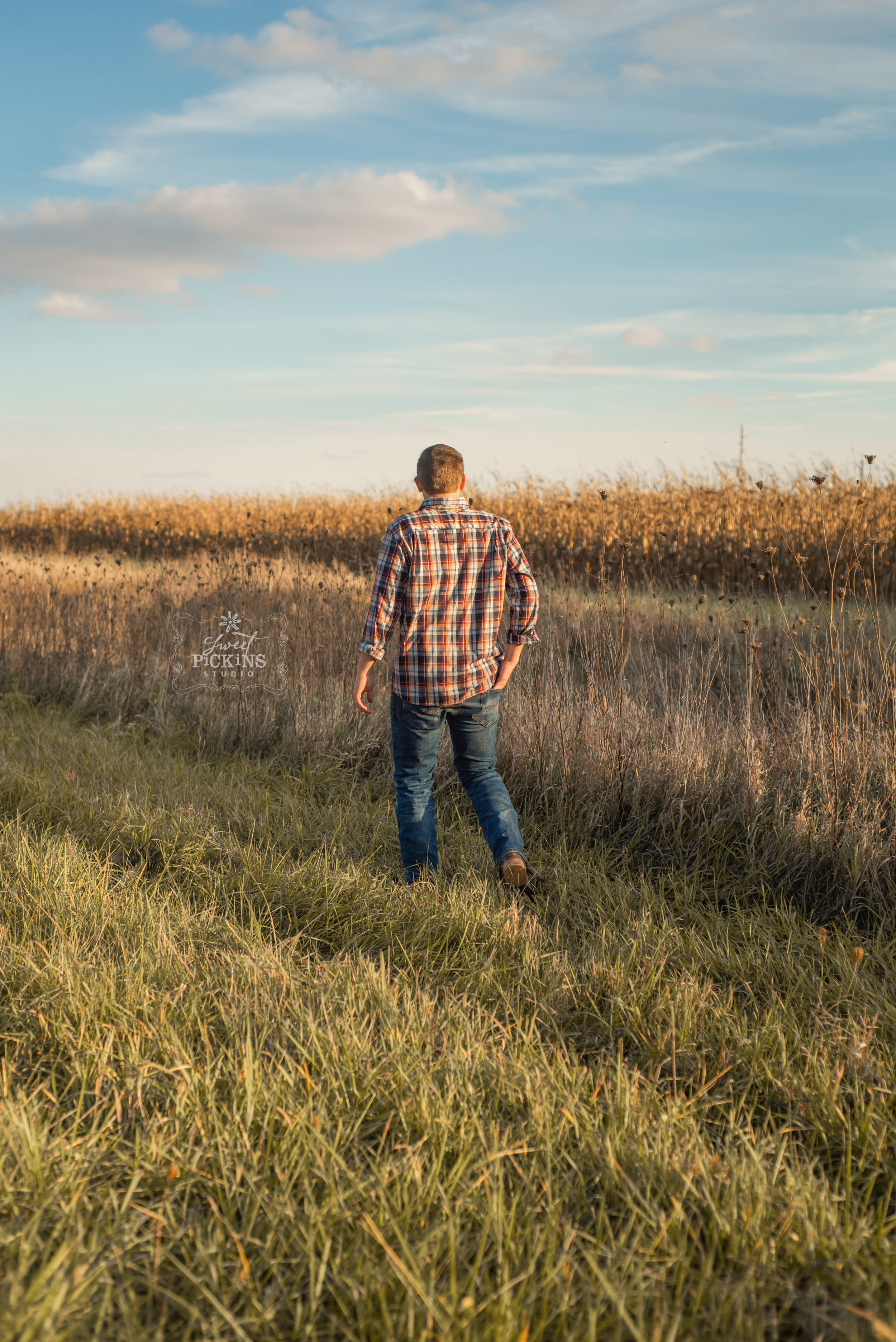 Peru, IN Senior Guy walking in farm field looking at autumn corn