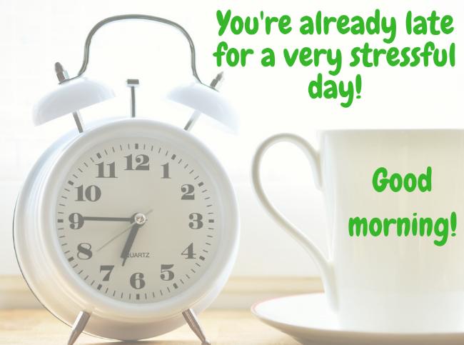 Good morning!.png
