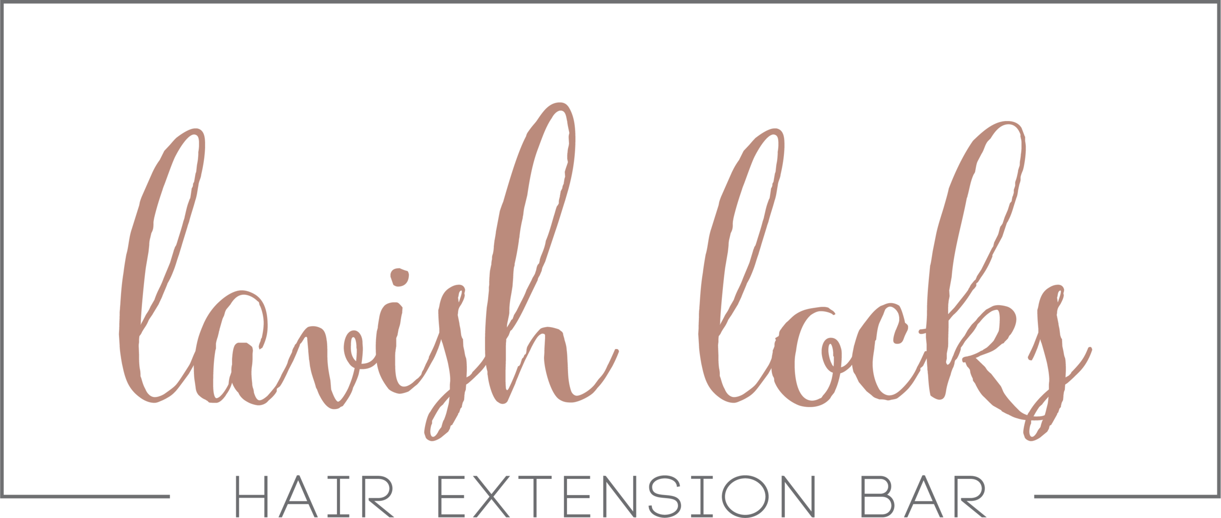 new hair extension bar logo main.png