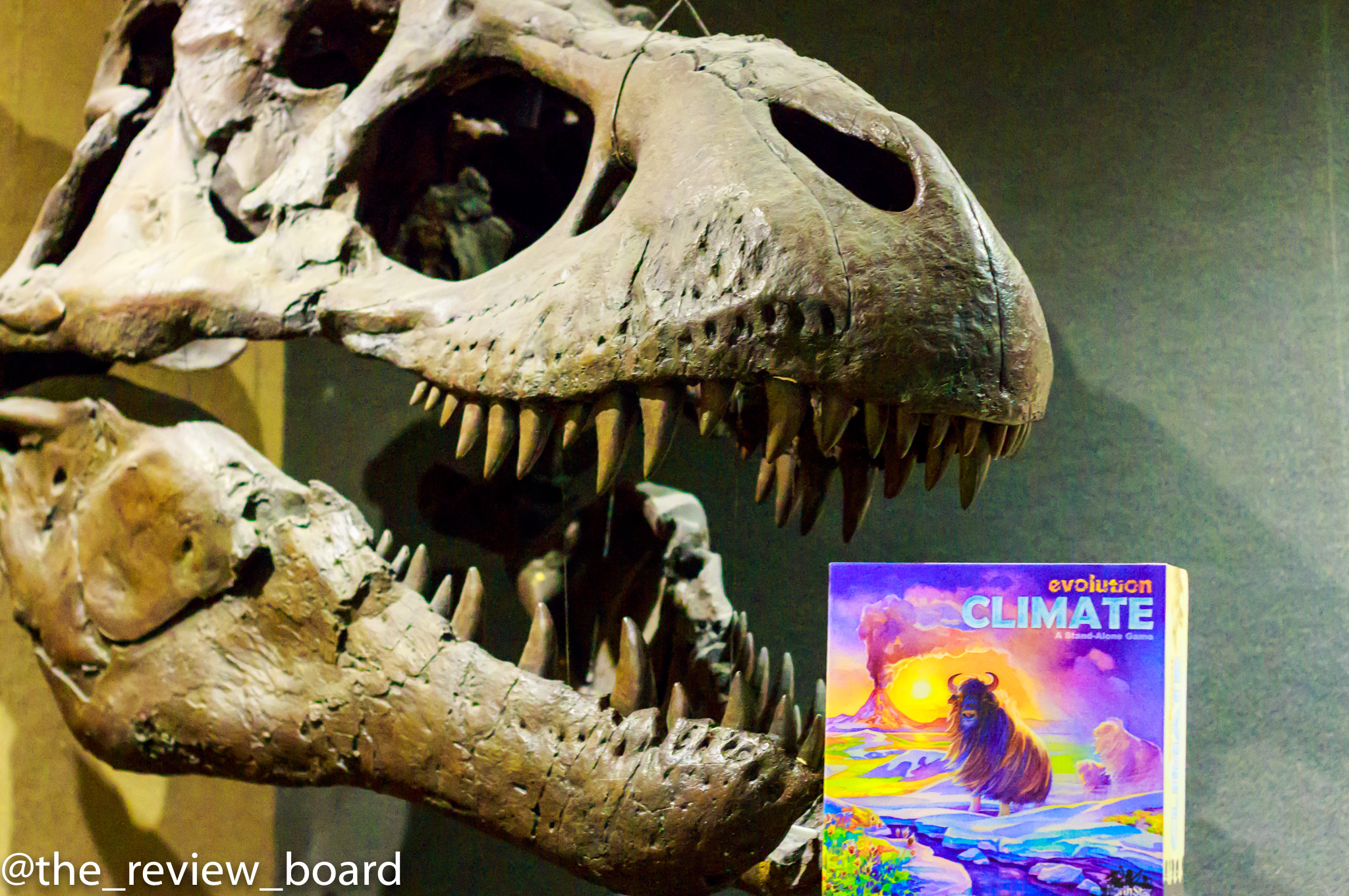 9 out of 10 Tyrannosauruses recommend Evolution. The other one is dead!