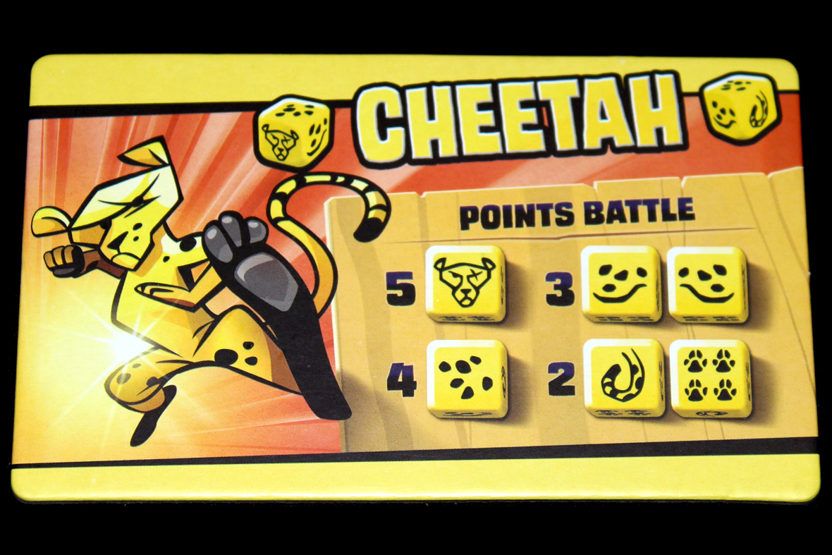 Cheetah Points.jpg