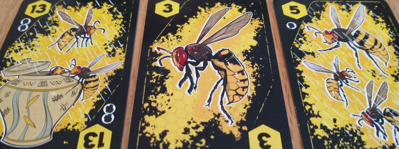 Anansi hornet cards.jpg