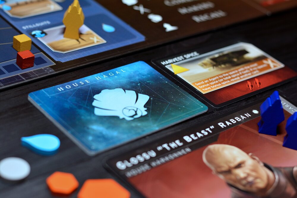 The House Hagal cards are used to determine the actions of the solo opponents. Photo: Fredrik Schulz