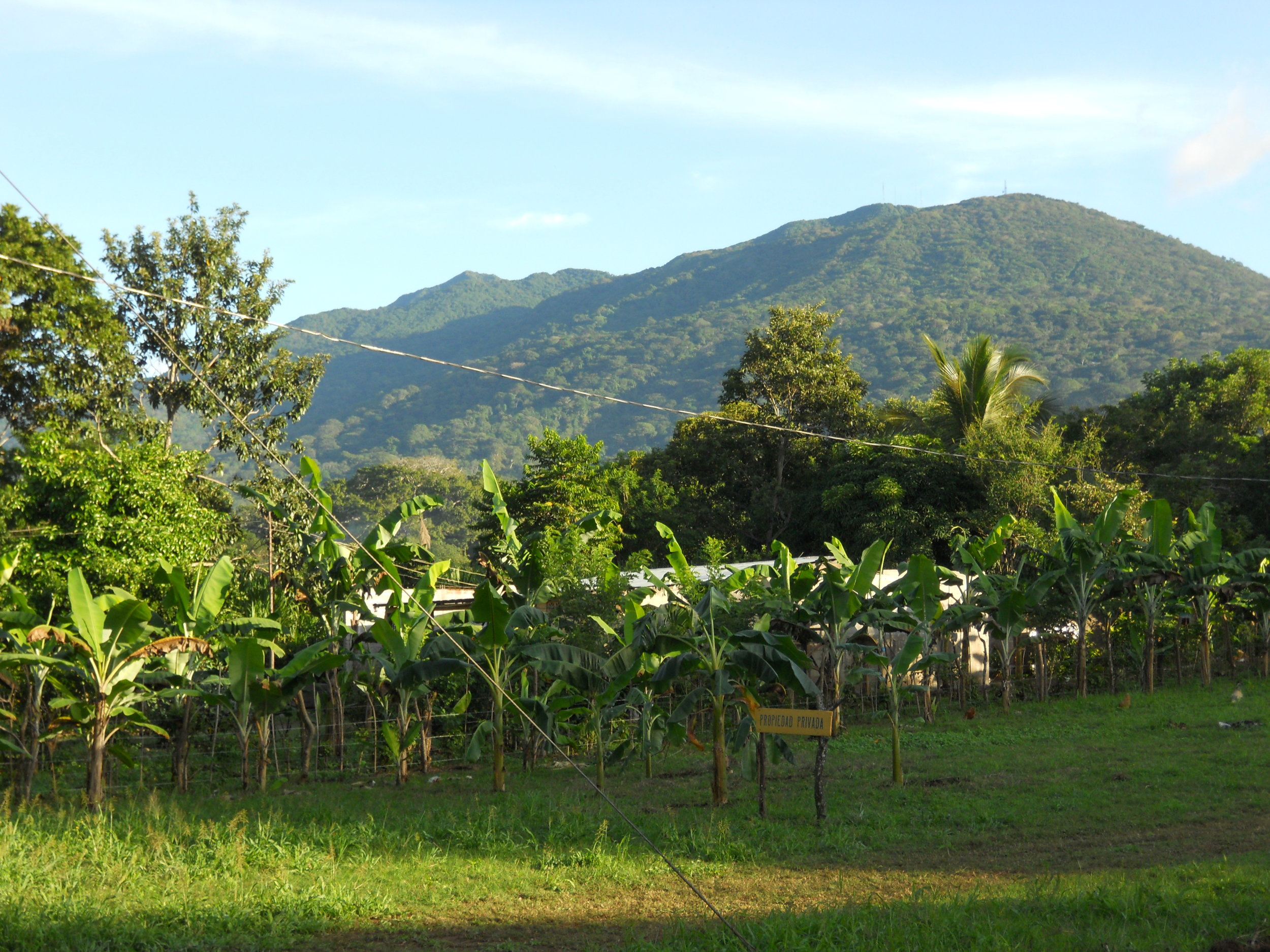 ©AJ9C  Mike set up for DX operations at a Honduran coffee plantation.