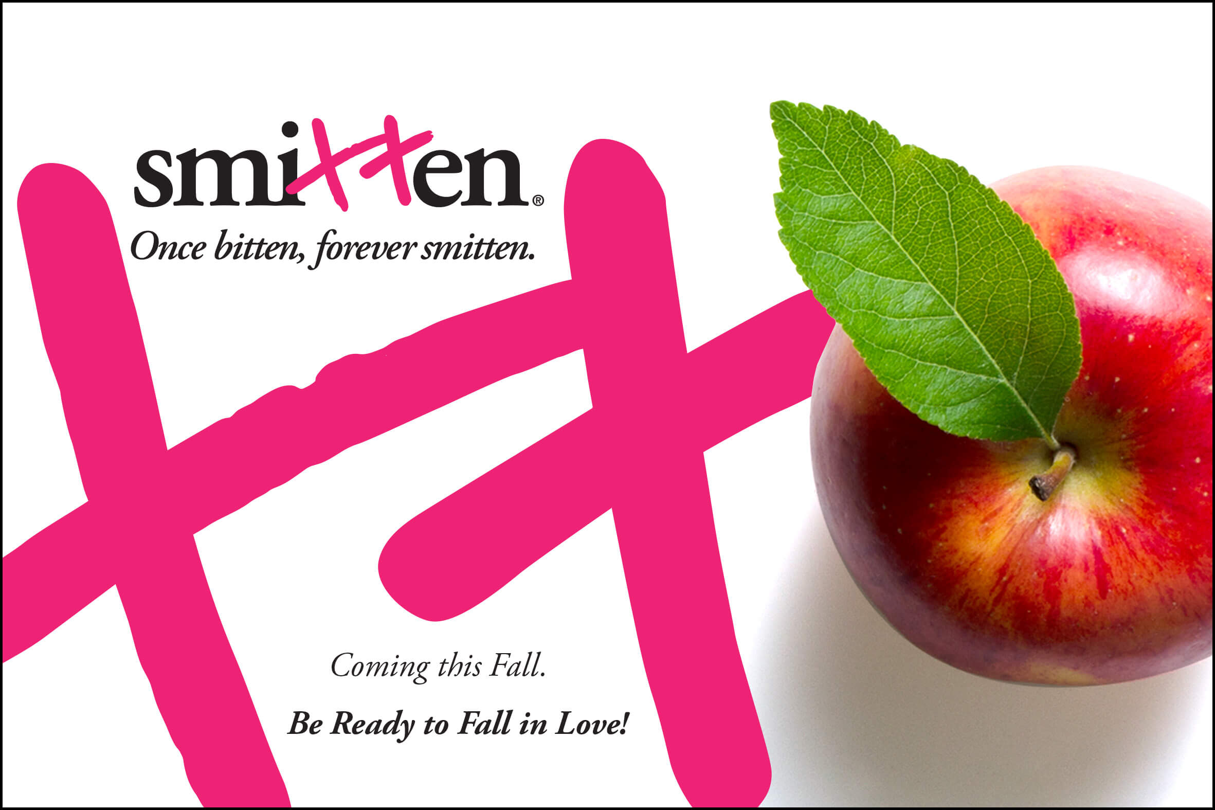 The promotion of Belleharvest's proprietary apple variety, Smitten, includes merchandising plans for the central U.S. and retail point-of-sale pieces, such as this.