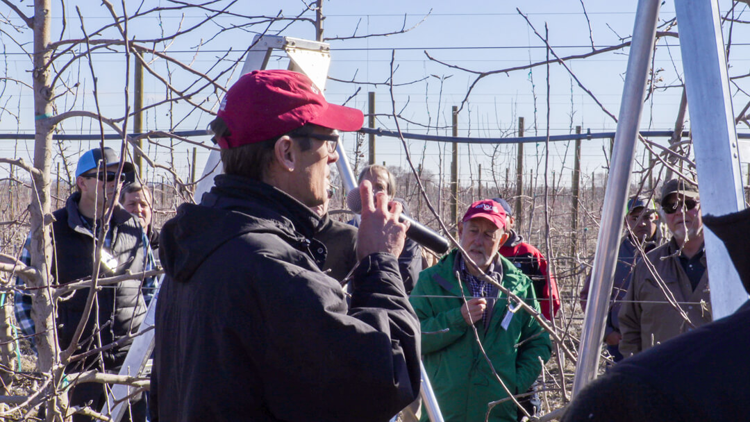 """Dr. Ken Breen (red hat, forefront) of PFR outlines """"Artificial Spur Extinction"""" as applied to sixth-leaf Smitten in a Pegasus orchard near Frenchman Hills."""