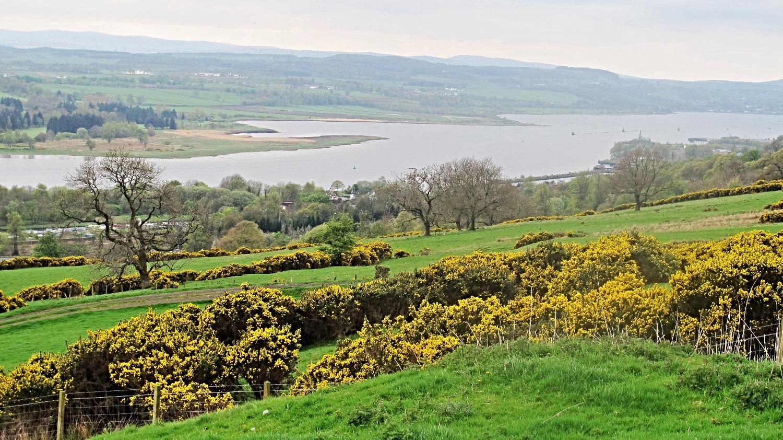 Clyde view.jpg