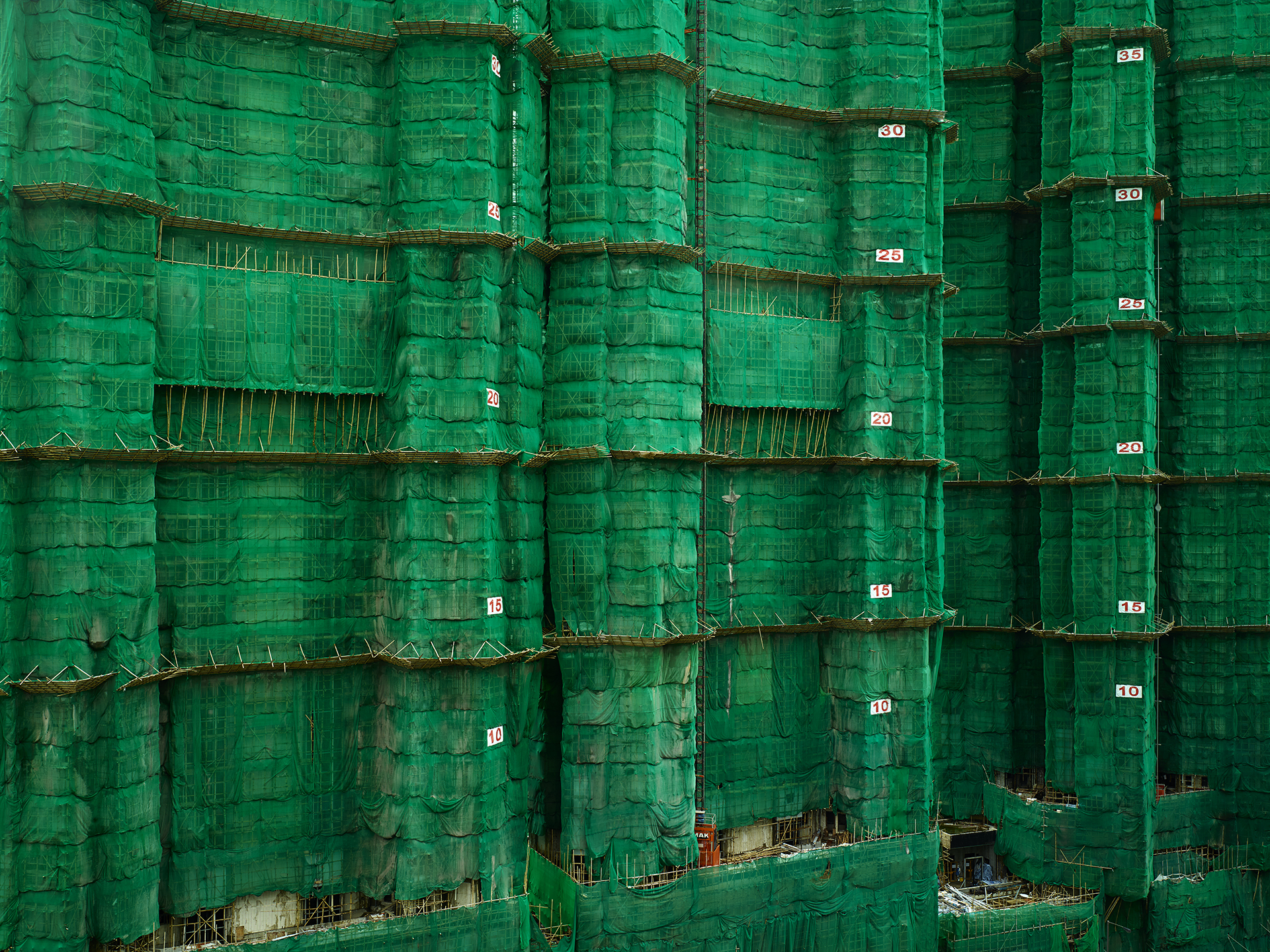 Green Cocoon #18, Hong Kong - 2013