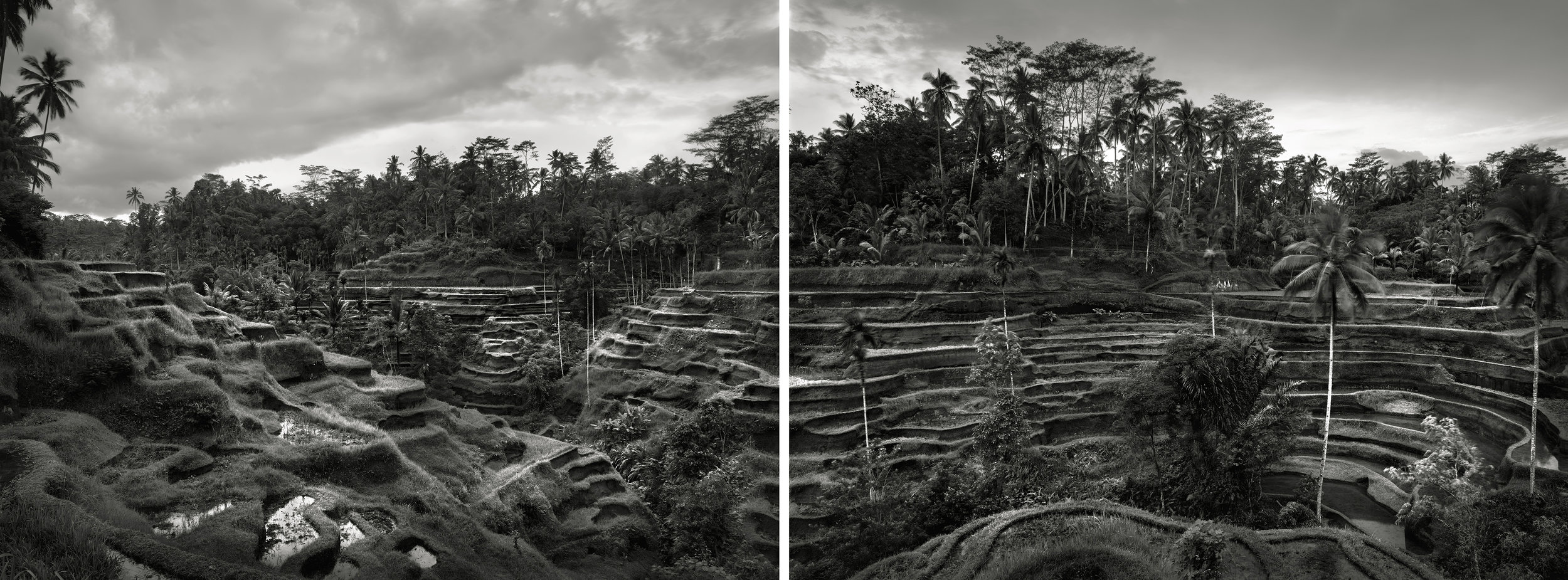 Ubud Terraces, Bali, Indonesia - 2006 (diptych) copy.jpg