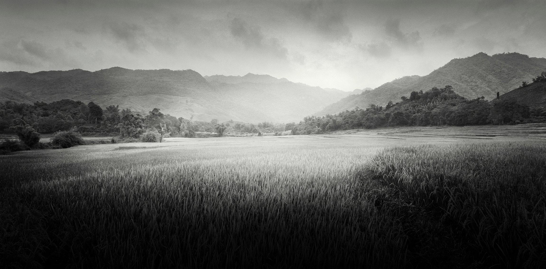 Son-La-Rice,-Son-La-Province,-Vietnam---2000.jpg