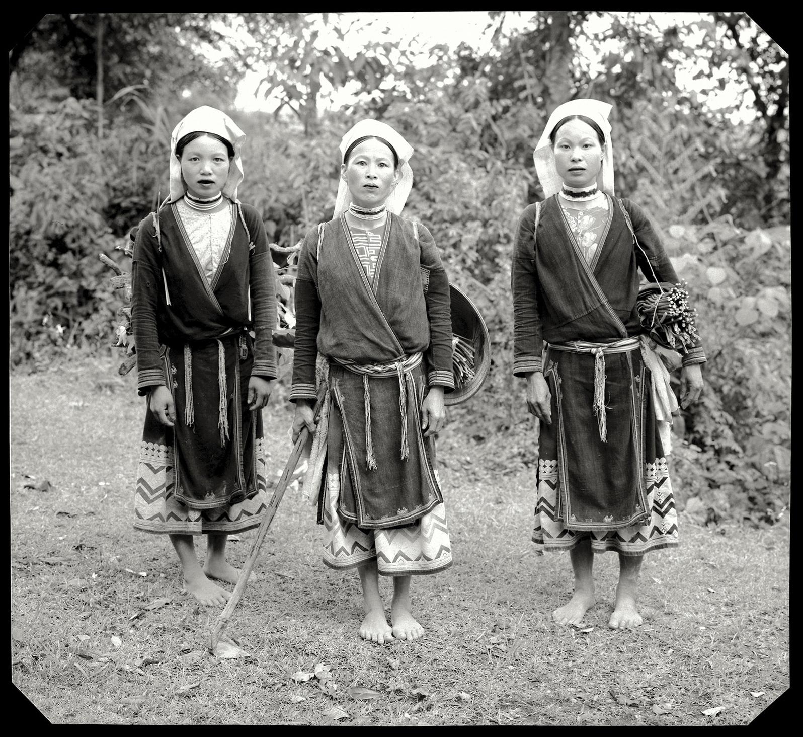 Three Dao Tien.jpg