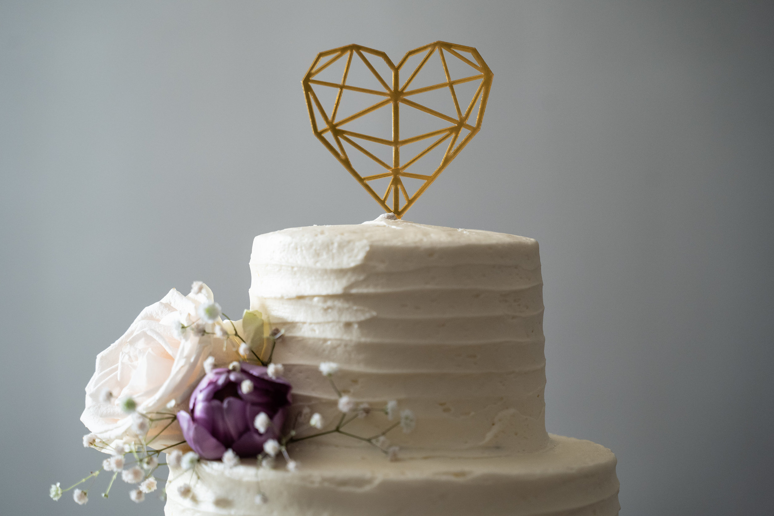 VisualRituals_raleigh-wedding-neal-sommer-19.jpg