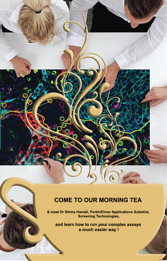 Our Morning Teas are the place to be !
