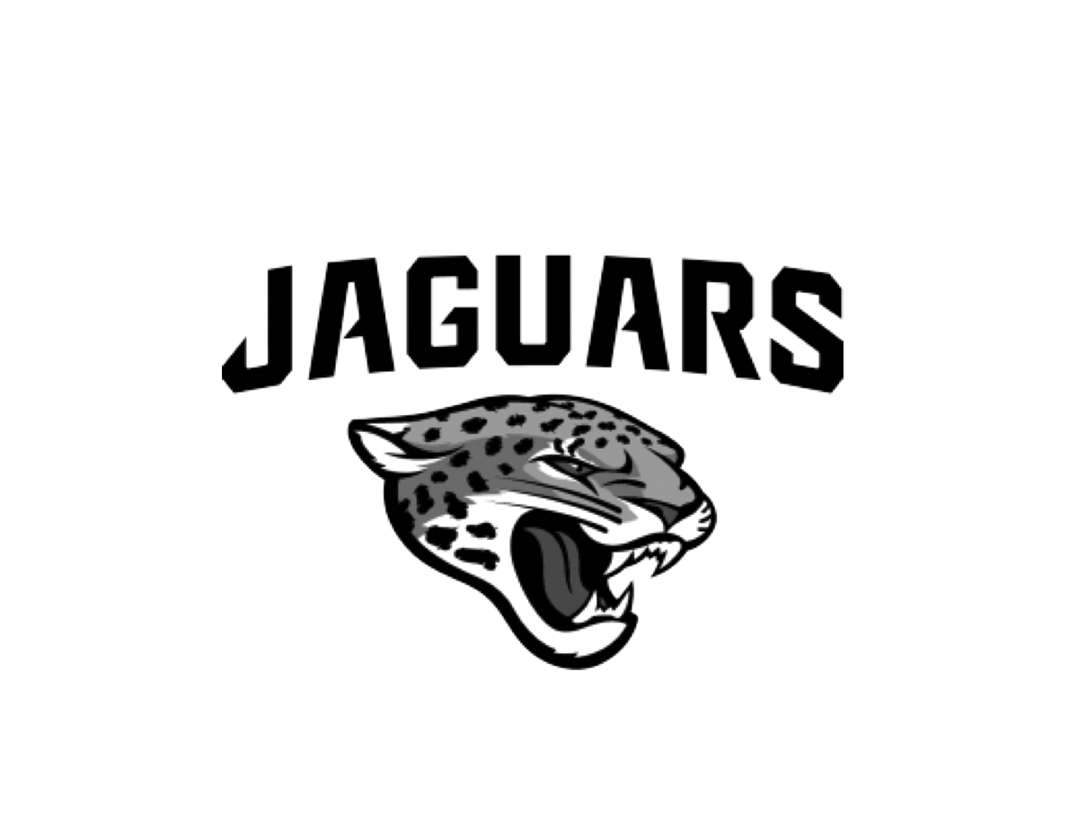 ALL-Client-Logos-BW_0004_Jaguars.png