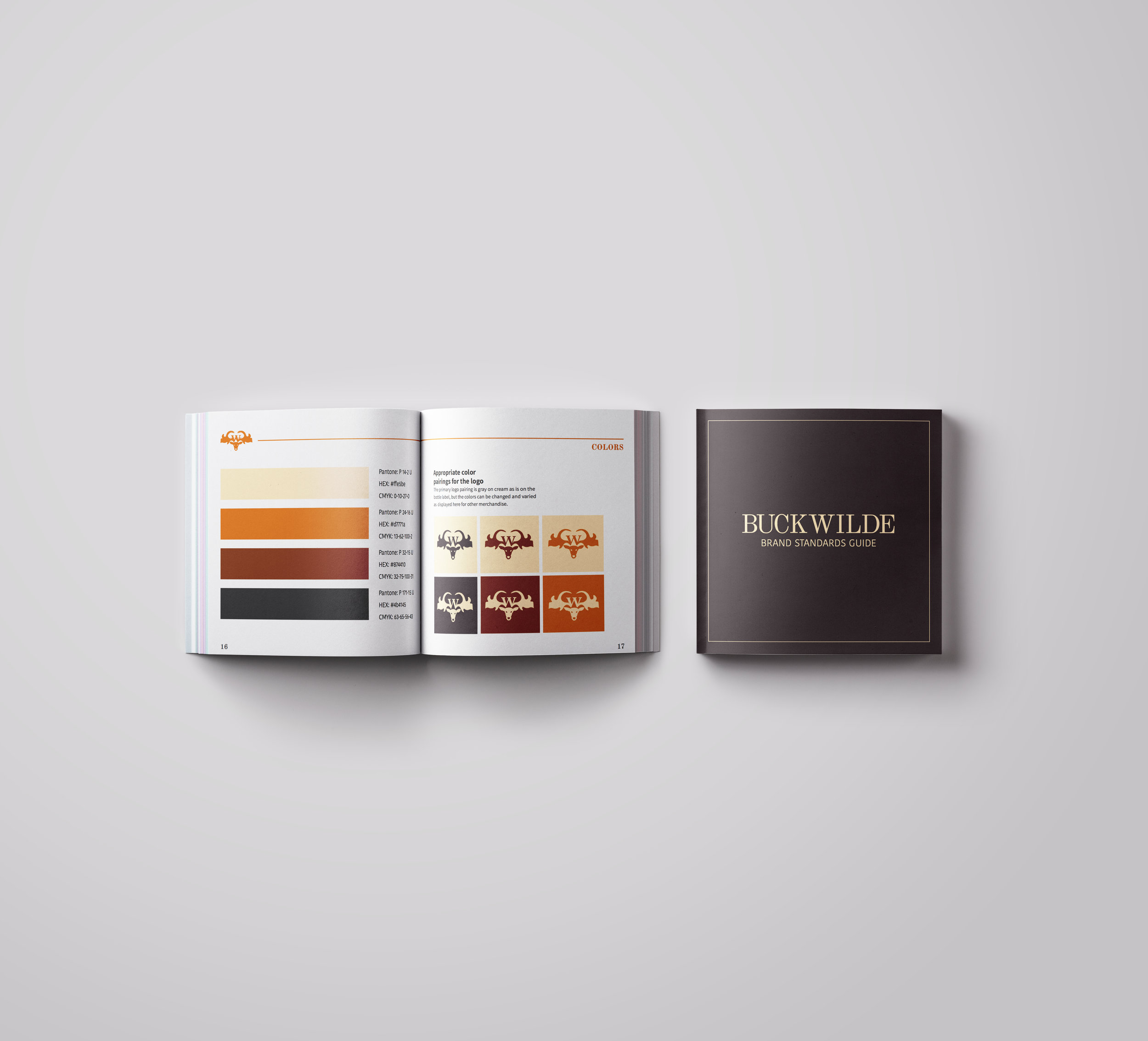 brand manual cover and spread.jpg