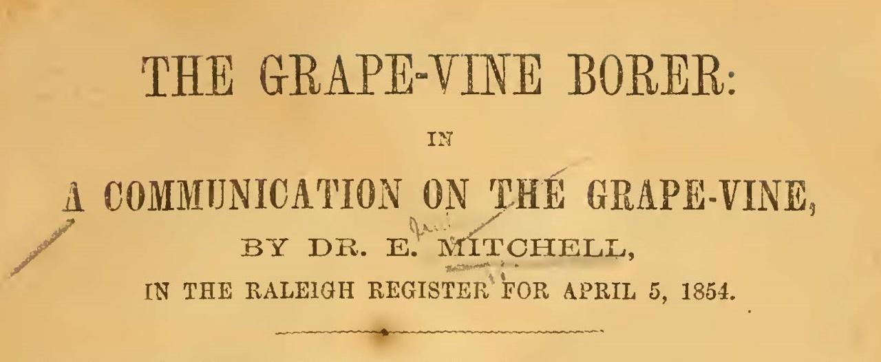 Mitchell, Elisha, The Grape-Vine Borer Title Page.jpg