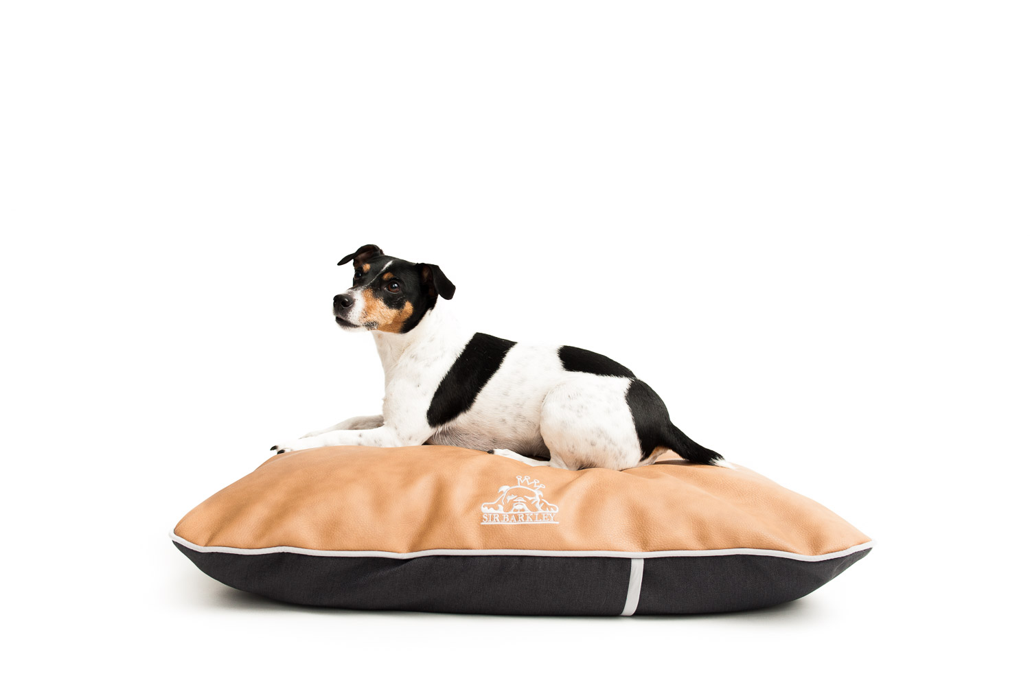 small-dog-bed-sir-barkley-pets