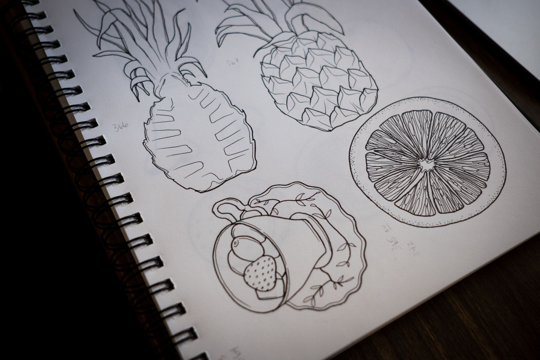 illustrations-laucolo